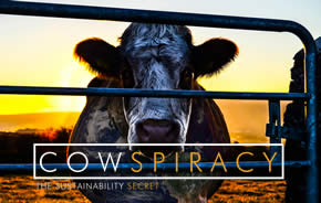 Image from 'Cowspiracy: The sustainability secret'